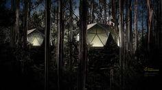 Domo en árboles como alojamiento glamping