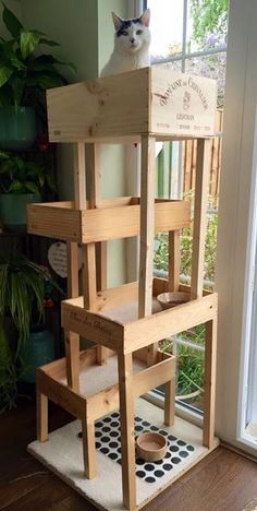 Wine box cat tree with a new penthouse level.