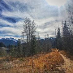 Yet another beautiful Fall day in the #RockyMountains. Time to get out of the office and hit the #trail! #playwinterpark #coloradolive #gogrand #trailrunning #mtb #bike