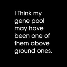Funny Quotes Pool Puns, Clever Quotes, Fun Quotes, Best Quotes, Genealogy Humor, Sometimes I Wonder, You Stupid, Everything Funny, Belly Laughs