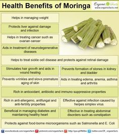 Health benefits of moringa include relief from stomach disorders, allergies and edema. The antioxidant power of moringa aids in liver protection, diabetes, eye protection, cardiovascular health, bone health, uroliathiasis, wound healing, healthy hair and skin. The antibacterial and anti-fungal properties of moringa help in fighting various infections including herpes.