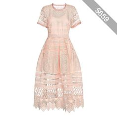 Alexis Alanna Blossom Embroidered Lace Dress: Blush
