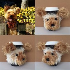 Custom dog cozy ready to ship. Wouldn't you like to see your dog recreated in yarn???
