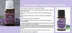 Top uses for Young Living's Lavender essential oil