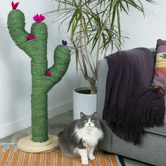 Need a stylish place for your cat to scratch its paws? This cactus scratching post is the cutest solution! Check out the tutorial below.
