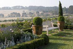 Paul Bangay » Mornington 1 planting includes: lambs ears, salvia, sedum, roses, Russian sage.... Stunning