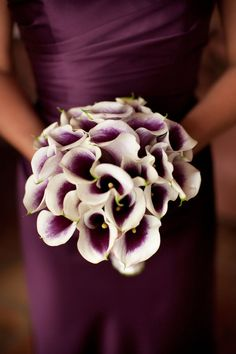 Julie Adama posted Wedding Bouquet - Simply Black and White. Deep purple almost black calla lilies complement the cymbidium orchids perfectly in this wonderful exotic bouquet. Dark Purple Wedding, The Purple, Shades Of Purple, Purple Dress, Purple Colors, Purple Bouquets, Flower Bouquets, Purple Lily, Wedding Ideas Purple