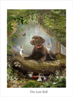 The Lost Ball - Fairy Print Mounted or unmounted or two sizes of plaques to choose from-All signed By Charlotte Bird