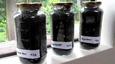 See Through Compost Jars Science Experiment For Kids