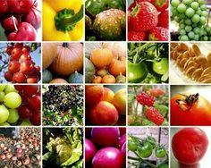 Vuelve el Foro Innova, lo último en frutas y hortalizas http://diariodegastronomia.com/mercado/ferias/16528-vuelve-el-foro-innova-lo-ultimo-en-frutas-y-hortalizas.html vía @DGastronomia