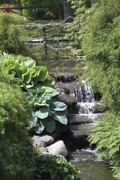 Visit the Halifax Public Gardens off Spring Garden Rd for a feeling of nature and wildlife. Halifax Public Gardens, Stuff To Do, Things To Do, City By The Sea, Spring Day, Spring Garden, Nova Scotia, Day Trips, Waterfall