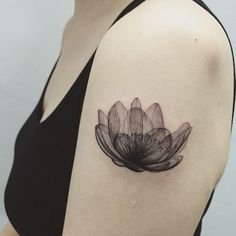 X-ray Lotus Flower Tatto by ilwol