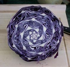 A perfect half of a head of red cabbage. Why is this so cool to me?