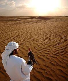Dubai desert༻神*ŦƶȠ*神༺