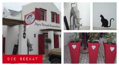 Die See Kat Restaurant Opened 5 November 2014 Die See Kat New Restaurant situated at the back of the building with some great paintings on consignment. Situated across the road from Die Winkel op Paternoster and The Noisy Oyster Noisy Oyster, Great Paintings, The 5th Of November, West Coast, South Africa, Restaurant, Lifestyle, Building, Outdoor Decor