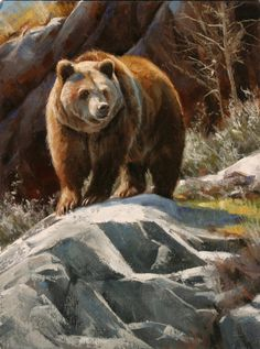 The Artwork of Edward Aldrich: North American Wildlife Paintings Bear Paintings, Wildlife Paintings, Wildlife Art, Bear Pictures, Animal Pictures, Nature Animals, Animals And Pets, Animals Tattoo, Animal Painter