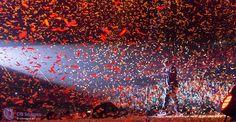 24e editie Nacht van Oranje in Ahoy   CB Images
