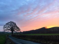 That tree again... no filter needed this time! #ColdDarkNorth #skyporn #sunsets #cumbria #thelakes # # # #outsideisfree #commutescount #cycling #doyouevenlanebro #10000kmcc #lanesnotlaps #nofilter