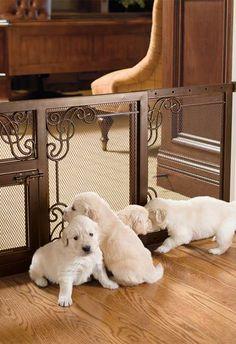 Ideas con estilo para la casa de tus mascotas #Ámbar #Muebles