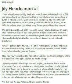 James and Lily potter headcanons Lily Potter, Harry Potter 2, Harry Potter Universal, Lilly And James Potter, Harry Potter Theories, Lily Evans Potter, Drarry, Jily, No Muggles