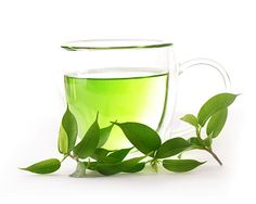 Green Tea Is A Rich Source of L-Theanine