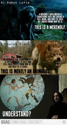 "Seriously!! Twilight ""werewolves"" are not werewolves! Thank you, Snape."