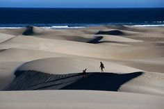 Sand boarding, South Africa Sand boarding in dunes. South Afrika, Safari Holidays, Honeymoon Places, Beaches In The World, Beautiful World, Beautiful Places, Hotels, Trip Planning, Places To See