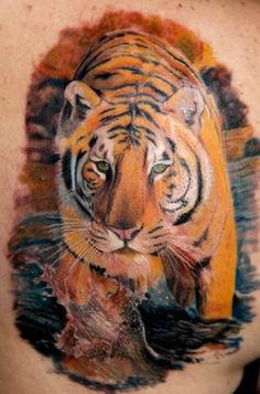 pictures of tiger tattoos | Amazing Realistic Tiger Tattoo Amazing Realistic Tiger Tattoo
