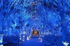 Google Image Result for http://www.bridalguide.com/sites/default/files/media/winter-wedding-winter-wonderland-ceremony-decor-preston-bailey....