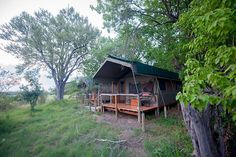 Camping Games, Game Reserve, Tents, Safari, Wildlife, Shades, Cabin, River, House Styles