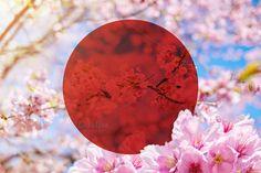 Blank red circle with Pink Sakura by salmon.black on @creativemarket