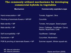 The commonly utilized mechanisms for developing commercial hybrids in vegetables Mechanism Commercially exploited crops Ha...