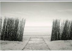 Cogeme de la mano y sigueme :) Fotografías,paisajes,playa.