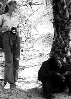 Jane Goodall.  Mine and Gabriel's favorite activist.
