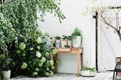 The serene white home of a designer. Karolina Bak.