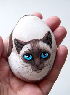 Cat painted rocks