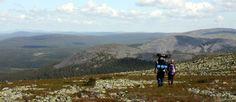 Hiking in Lapland (Finland, Sweden, Norway).