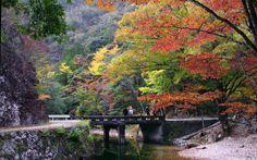 Beautiful Shinshiro Aichi
