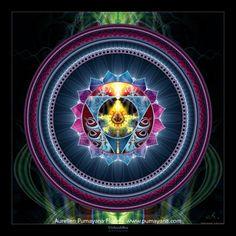 5th Chakra - Vishuddha - Throat Chakra  creativity, communication. Where Karmic memories are stored