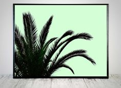 Mint Green Print Tropical Print Green Palm Tree by CristylClear