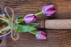 #scenicscript #rustic #sign #barnboard #flowers #garden #blooms #vase #shutter #spring #diy #homedecor #hoe