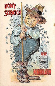 LP37JUL  Comic Mosquito Bug Insects, vintage Advertising Mentholatum   Postcard