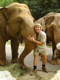 I miss you Steve Irwin.