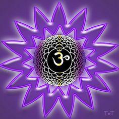 Explications sur les 7 chakras, nadis et kundalini 7 Chakras, Chakra Raiz, Om Shanti Om, Reiki Chakra, Om Symbol, God Pictures, Ancient Symbols, Crown Chakra, Angel Art