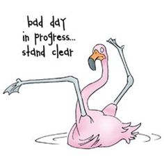 Art Impressions Zoo Crew Cling Rubber Stamp-Flamingo Seet love it!one of those days Flamingo Art, Pink Flamingos, Flamingo Funny, Paludarium, Pink Bird, Art Impressions, The Funny, Bad Day Funny, Bad Day Humor