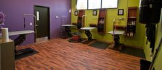 The Green Leaf dog grooming room, complete with state-of-the-art equipment and hypo-allergenic products.