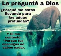 """asked God why He taking me for into deep water. And He answered me, """"Because your enemies do not know how to swim.""""I asked God why He taking me for into deep water. And He answered me, """"Because your enemies do not know how to swim. Bible Quotes, Bible Verses, Me Quotes, Spanish Quotes, Quotes About God, Dear God, Faith In God, God Is Good, Trust God"""