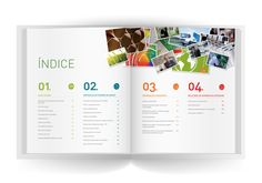 Annual Report Inapa on Behance