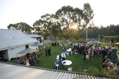 A reception or pre-dinner drinks on the lawns at St Leonards Vineyard