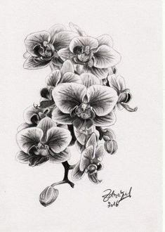 95 najlepších obrázkov z nástenky Skica   Kresba  dc2c48c89b